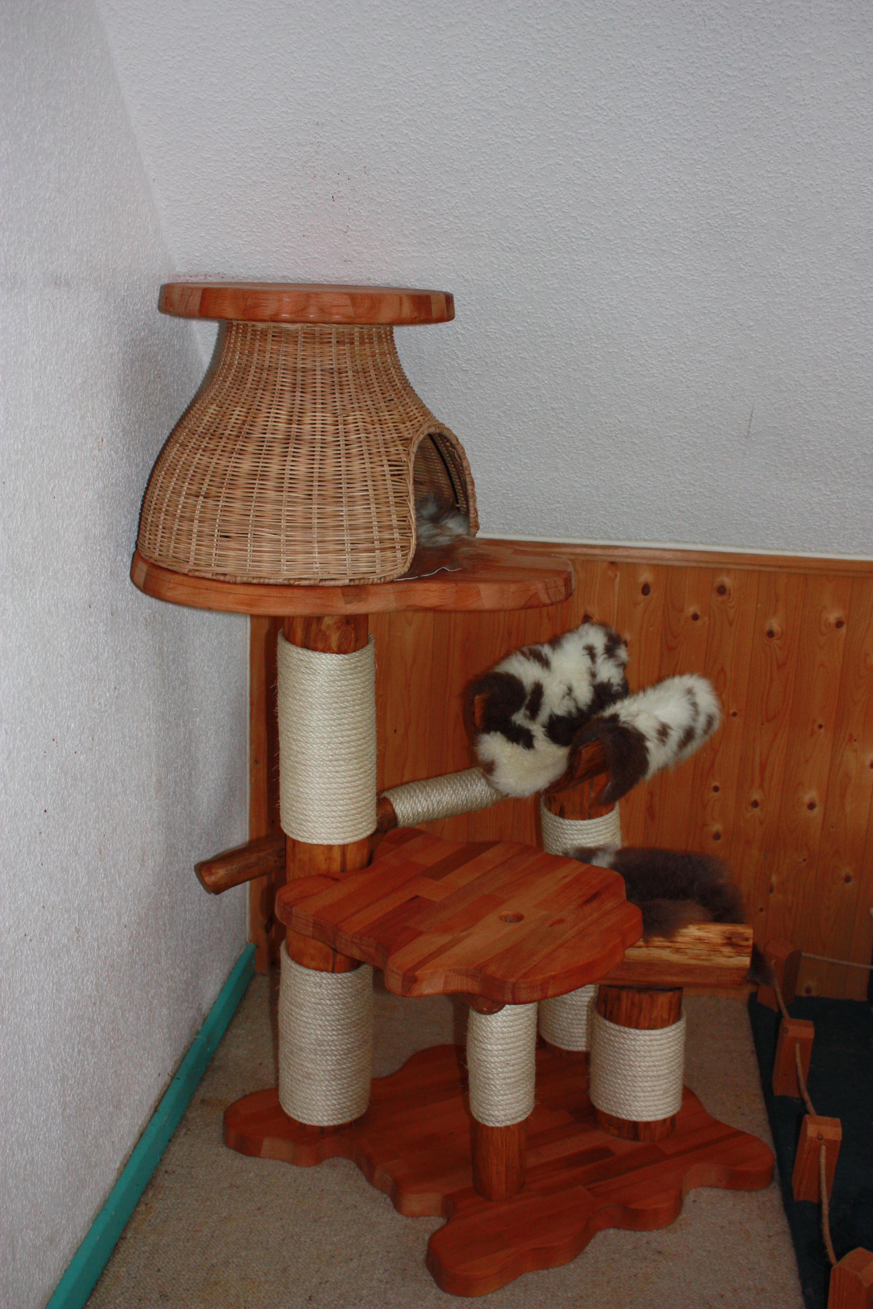 kitten kratzb ume katzen eldorado. Black Bedroom Furniture Sets. Home Design Ideas