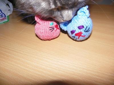 Katzenspieltier in Aktion